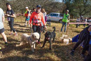 Iron Crown Trail Run